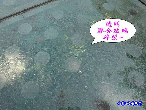 三灣月眉吊橋 (2).jpg