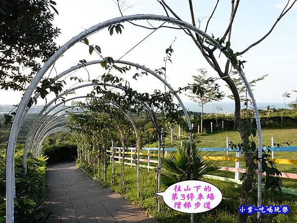 往-海灣星空景觀咖啡館第3停車場.jpg