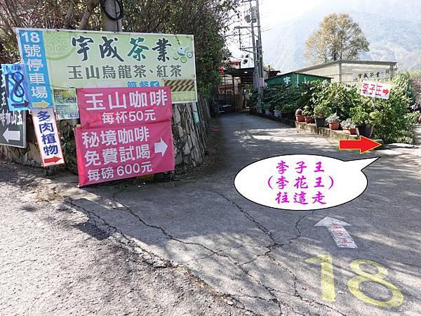 P18宇成茶葉旁小路『李子王』.jpg
