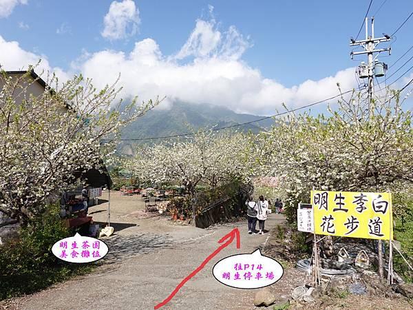 明生花步道、觀景步道景觀 (2).jpg