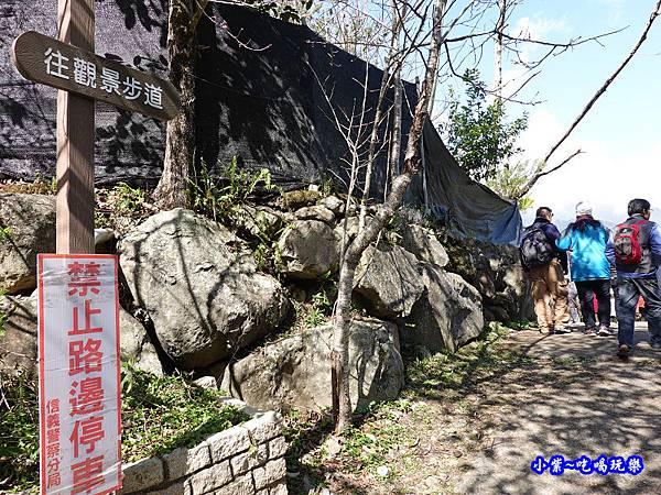草坪頭橋旁觀景步道-草坪頭櫻花季  (3).jpg