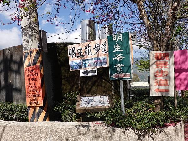 觀景步道、101古厝小吃、明生花步道.JPG