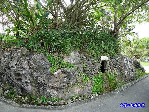 台東-男人之石7.jpg