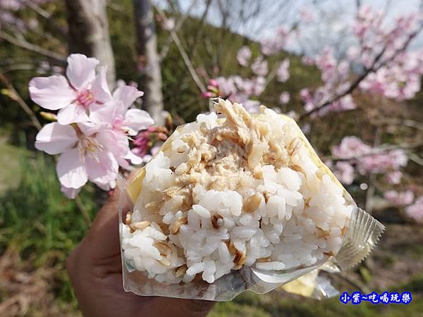 全家超級大麥-日式胡麻雞肉飯糰  (3).jpg