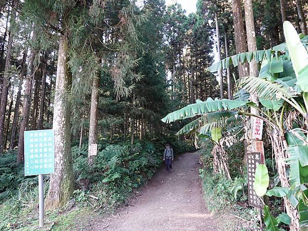 4號停車場旁登山口 (3).JPG