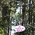 4號停車場旁登山入口.jpg