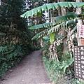 4號停車場旁登山口 (1).JPG