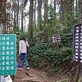 森林咖啡館內-森林登山步道1.JPG