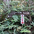 森林咖啡館內-森林登山步道12 (2).JPG