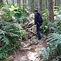 山上人家森林步道2.jpg