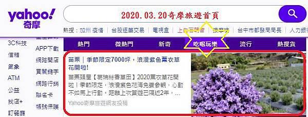 2020.3.20苗栗-葛瑞絲香草田.JPG