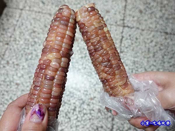 彩虹玉米-雅聞七里香玫瑰森林-馬路對面 (2).jpg