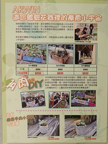多肉盆栽DIY苗栗-雅聞七里香玫瑰森林.JPG