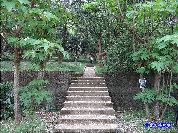 新竹-金獅步道5.jpg