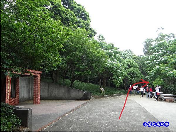 新竹-金獅步道8.jpg
