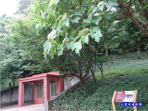 新竹-金獅步道12.jpg