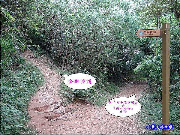 新竹-金獅步道20.jpg