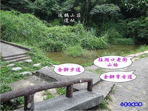 新竹-金獅步道24.jpg
