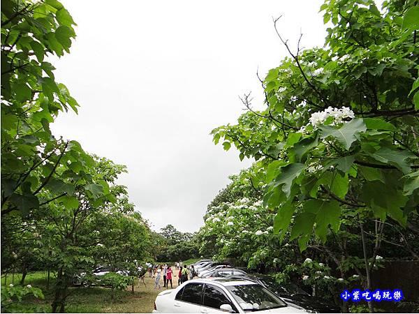 新竹-金獅步道38.jpg