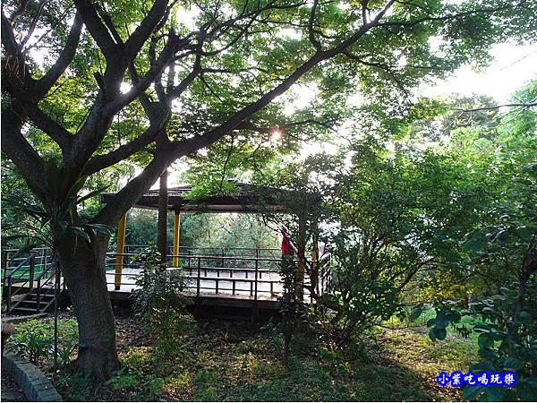 新竹-金獅步道43.jpg
