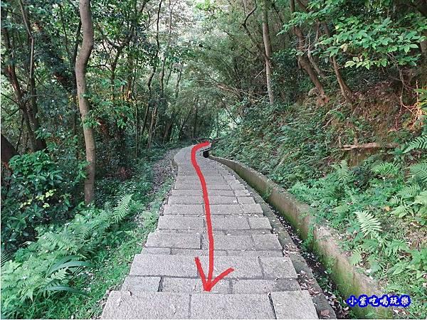 新竹-金獅步道45 - 複製.jpg