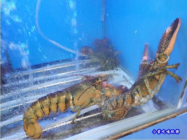 波士頓龍蝦-珍寶燒肥鵝餐廳.jpg