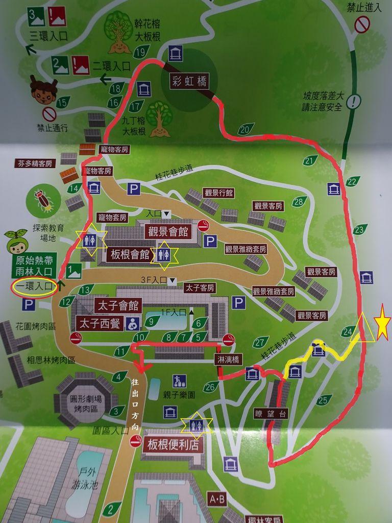 一環步道接大廳捷徑-大板根森林步道.JPG