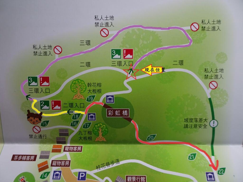 二環與三環交叉路口-大板根森林步道.JPG