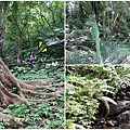 三峽-大板根森林園區首圖.jpg