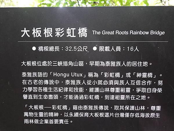 大板根彩虹橋 (4).JPG