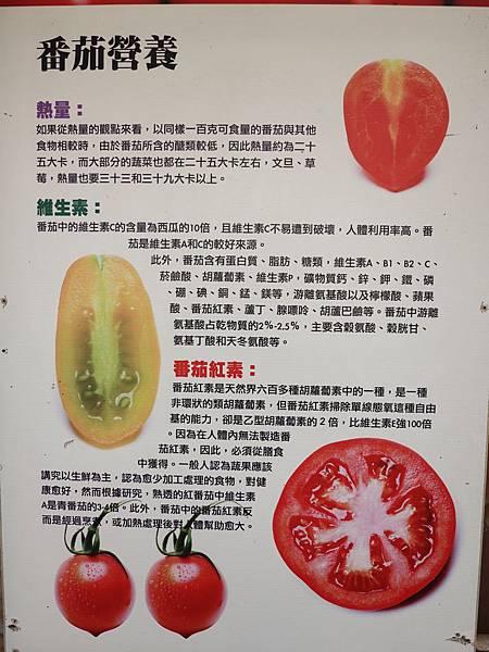番茄的營養-愛情果園.JPG
