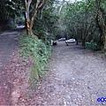 雲森瀑布入口下方停車場 (1)0.jpg