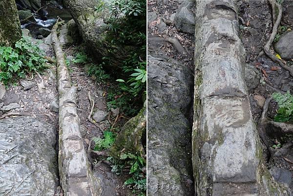 木頭步道到溪邊.jpg