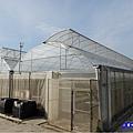 網室蔬菜區-綠意山莊 (2).jpg