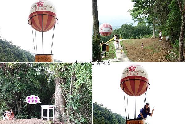 熱氣球拍照點-翠墨莊園.jpg