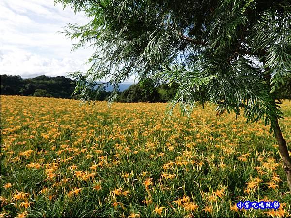小瑞士農場-赤科山 (14).jpg