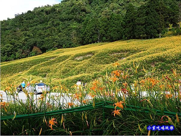 小瑞士農場-赤科山 (18).jpg