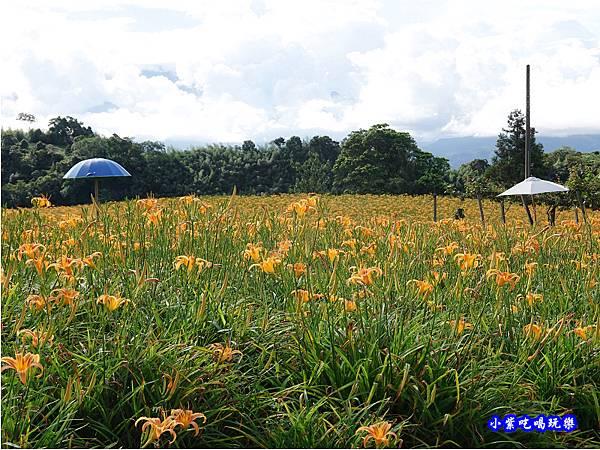小瑞士農場-赤科山 (19).jpg