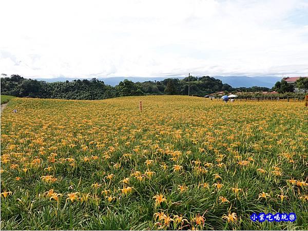 小瑞士農場-赤科山 (26).jpg