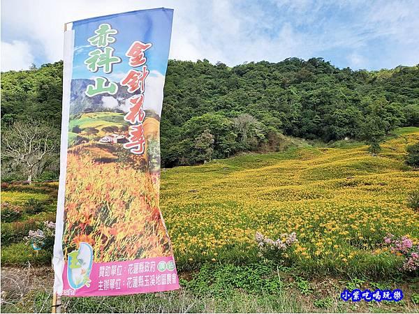 赤科山-黎明農園  (7).jpg