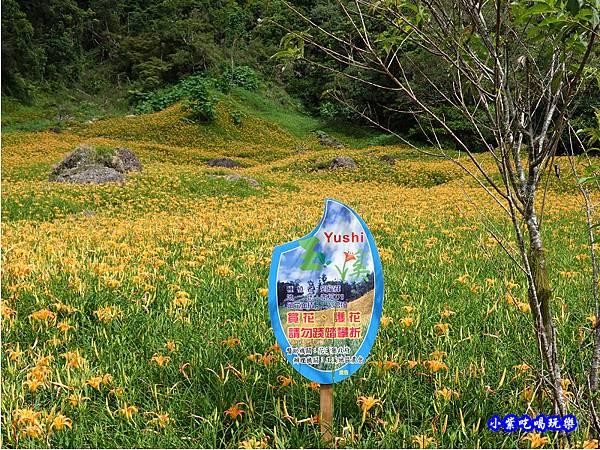 赤科山-黎明農園  (11).jpg