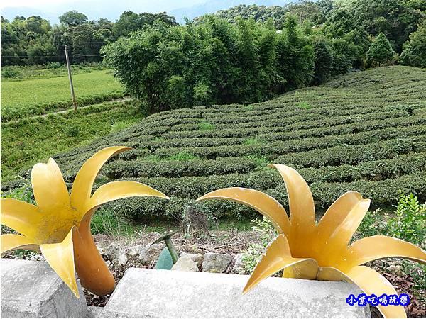赤科山-黎明農園  (20).jpg