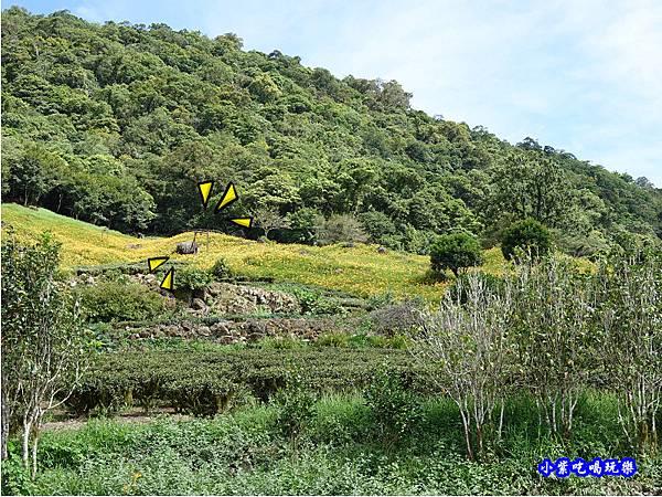 赤科山-黎明農園  (28).jpg