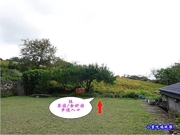 赤科山-黎明農園  (32).jpg