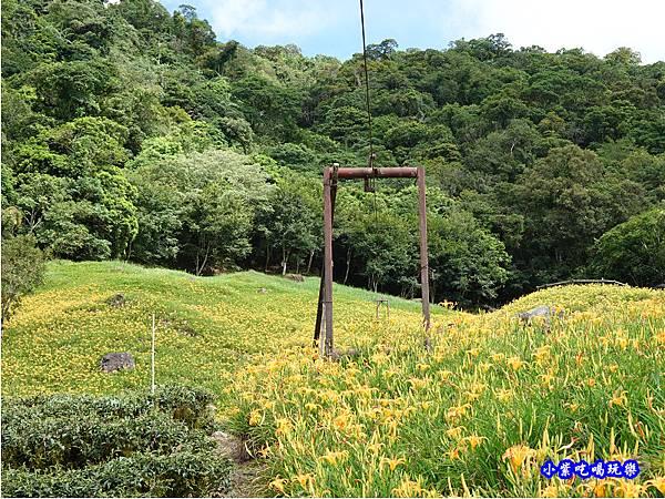 赤科山-黎明農園  (40).jpg