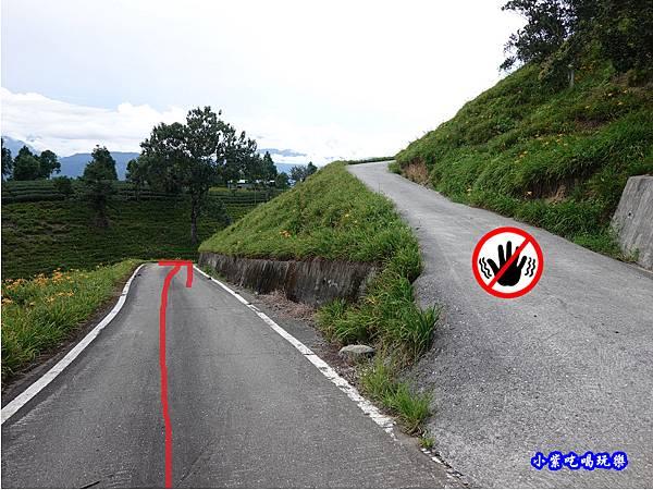 往赤科山小台灣路線指引2.jpg