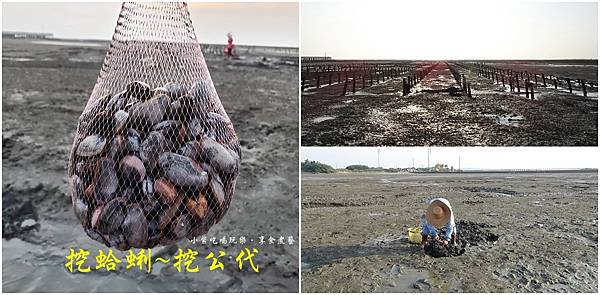 海山漁港挖公代首圖.jpg