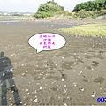 海山漁港濕地入口處 (1).jpg