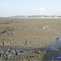 新竹香山-海山漁港濕地 (7).jpg