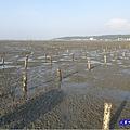 新竹香山-海山漁港濕地 (10).jpg